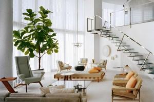 living-room-modern-white-ficus-fiddle-leaf-joe-serrins-WSJ